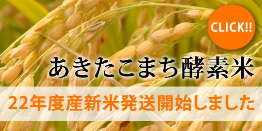 22年度産新米あきたこまち酵素米