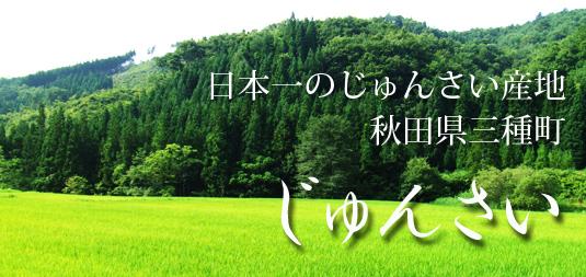 じゅんさい(じゅん菜・ジュンサイ