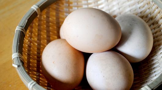比内地鶏の生卵