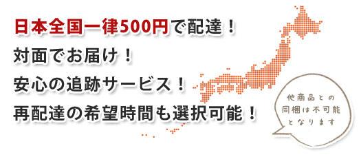 日本郵便のレターパック500にて全国へお届けいたします。料金は500円